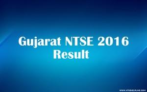 NTSE Exam 2016 Results